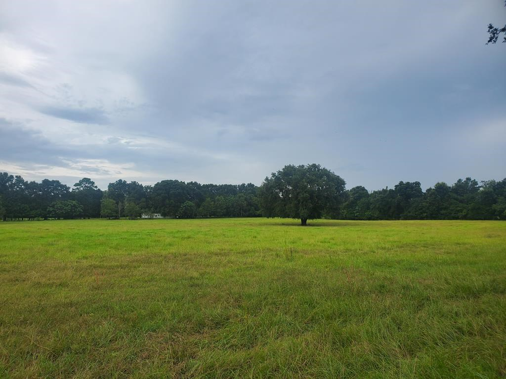 15 acres Vacant land for sale Bell Gilchrist County Florida