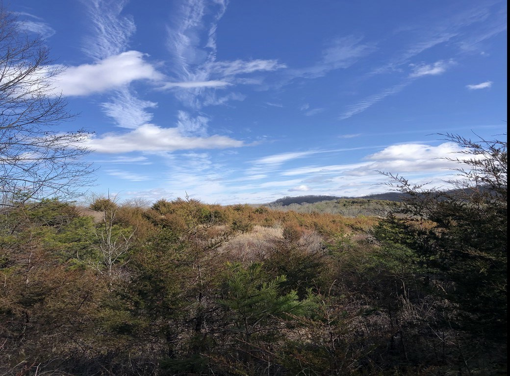 East Tennessee Land for Sale Greene County at Auction