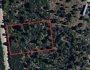 WOOD LOT FOR SALE TIMBERON NEW MEXICO