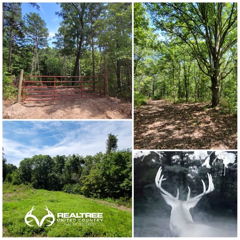 Hunting Property For Sale near Drury, Douglas County, MO