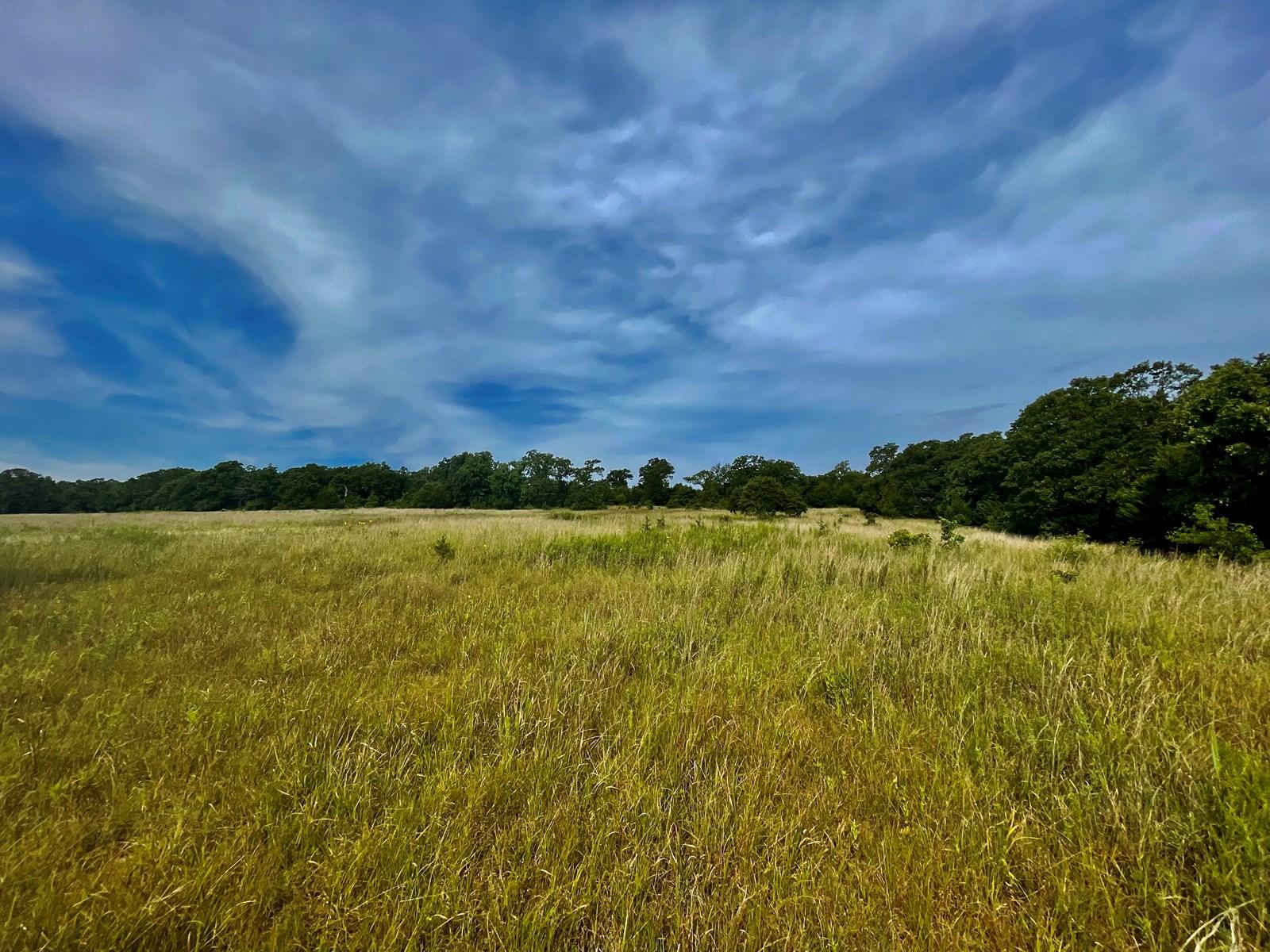 80 Acres - Big Bucks, Timber, Pasture and Rural Water