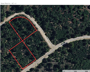 MOUNTAIN LAND FOR SALE IN NEW MEXICO