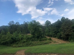 41.55 ACRES/NO RESTRICTIONS/ROLLING/PRIVATE