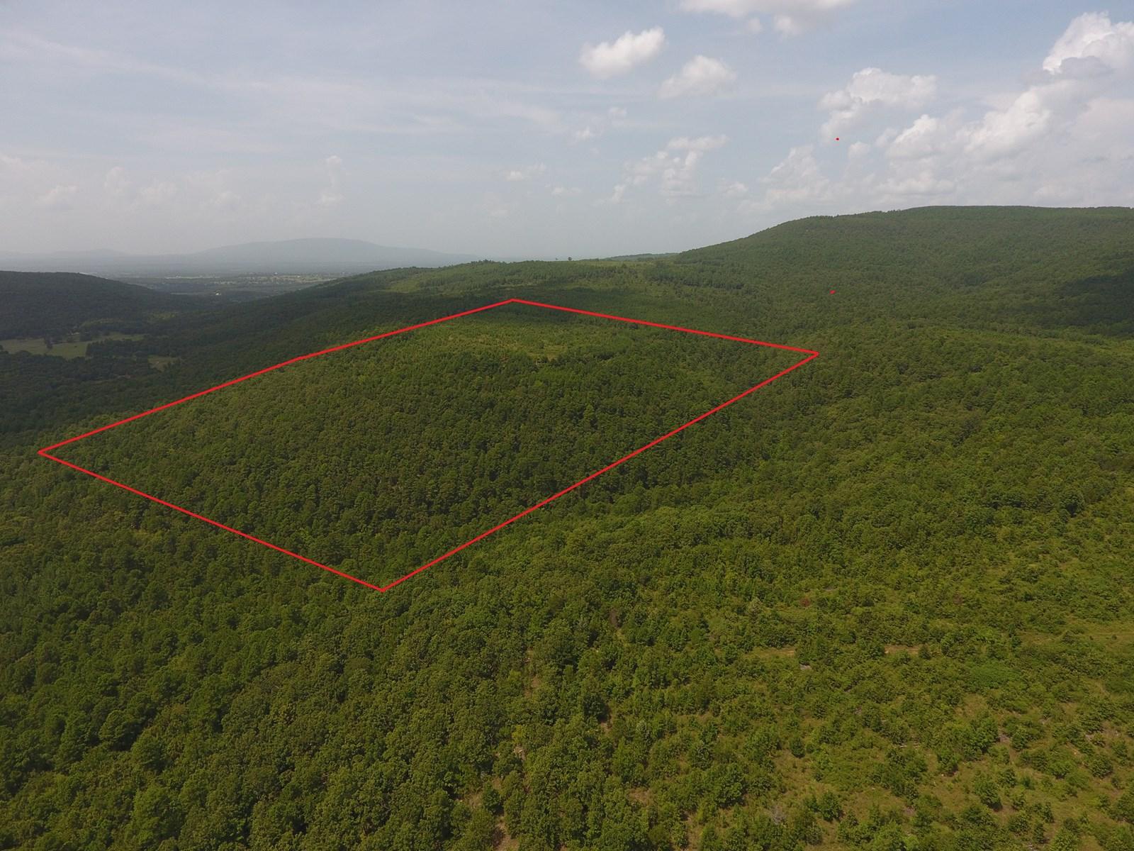 62 Acre Poteau Mountain Recreational Property