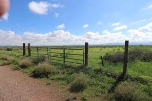 570 ACRES OF FERTILE FARM GROUND IN PEARCE, AZ COCHISE CNTY