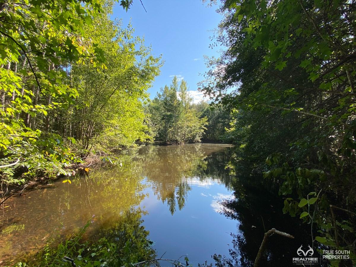 Cummings Hampton Co. Timber Land w/ Pond