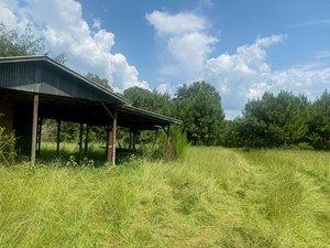 RURAL TIMBERLAND NEAR STEPHENS, AR FOR SALE W/ POND AND BARN