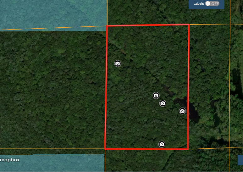 Hunting Land For Sale Warrick Cty IN, Borders Interlake SRA