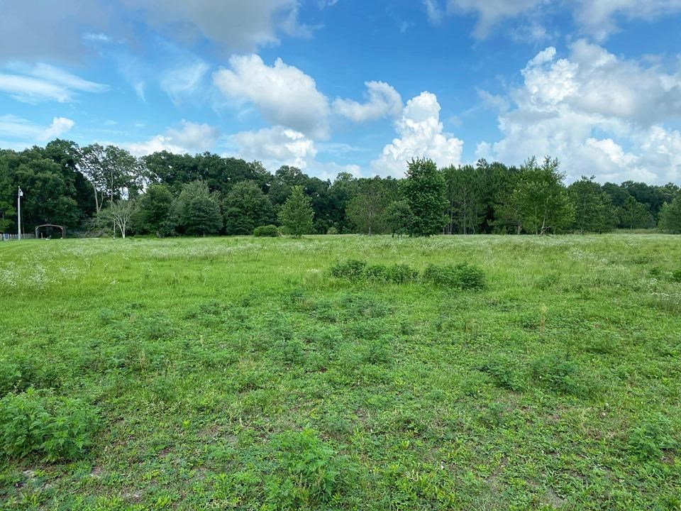 VACANT LAND FOR SALE!