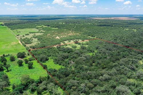 Hunting Land in Atascosa County