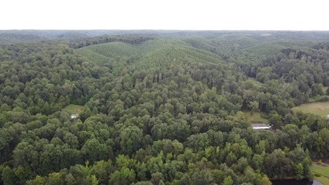 Hunting Land with Acreage for Sale in Lewis County, TN