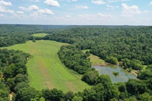 TENNESSEE HUNTING PROPERTY FOR SALE WITH OWNER FINANCING!