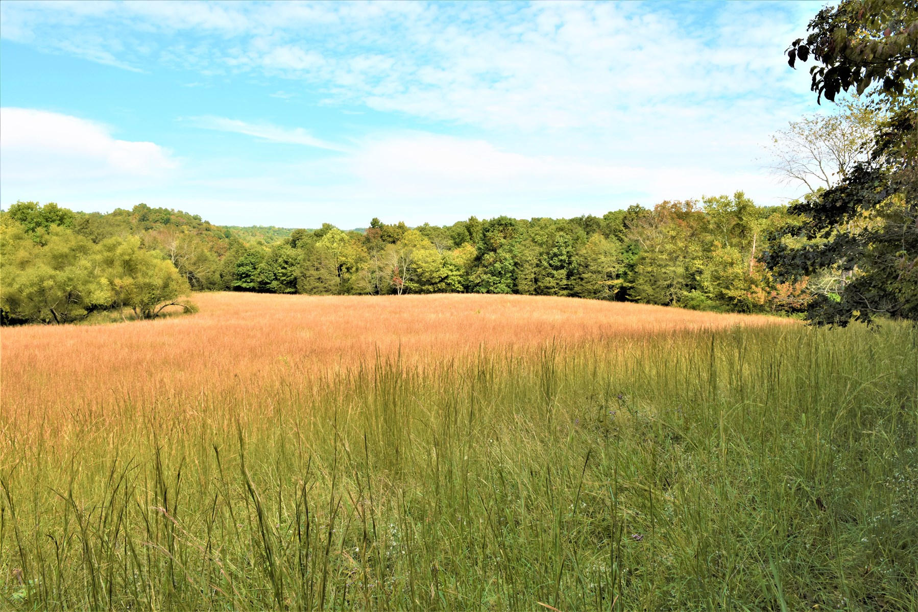 Hunting, Home Sites, Recreation, Year-round Creeks, Private