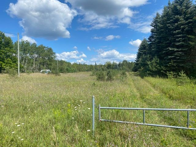 Northern Michigan Hunting Property For Sale