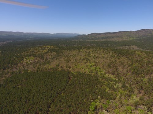 Blue Mountain  5 Acre Off-Grid Cabin Site  - National Forest