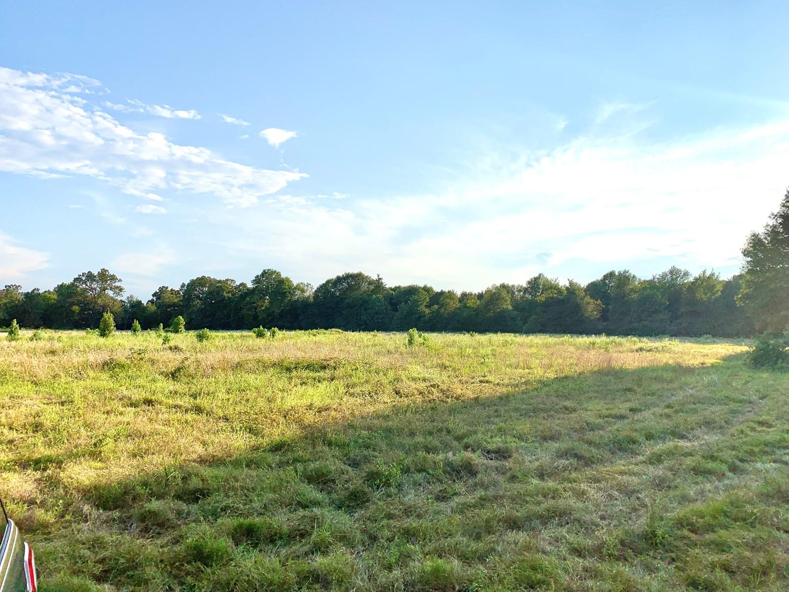 Recreational Residential Acreage for Sale Lamar County Texas