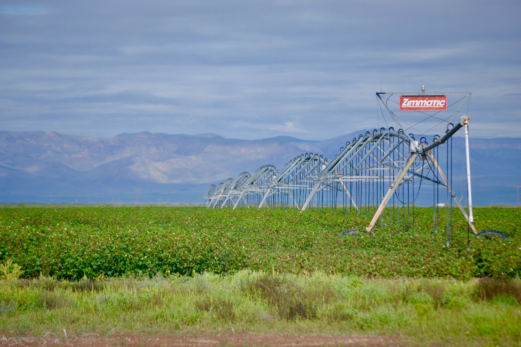 IRRIGATED FARM LAND WATER INVESTMENT OPPORTUNITY VAN HORN TX