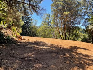 5 ACRES FOR SALE GOLD BEACH, OR