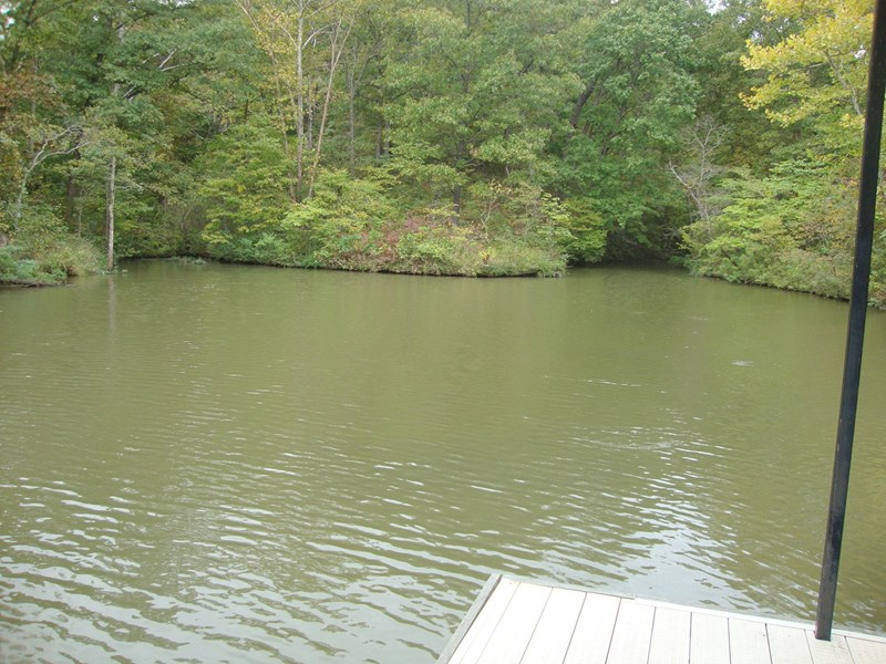 View of end of cove from dock
