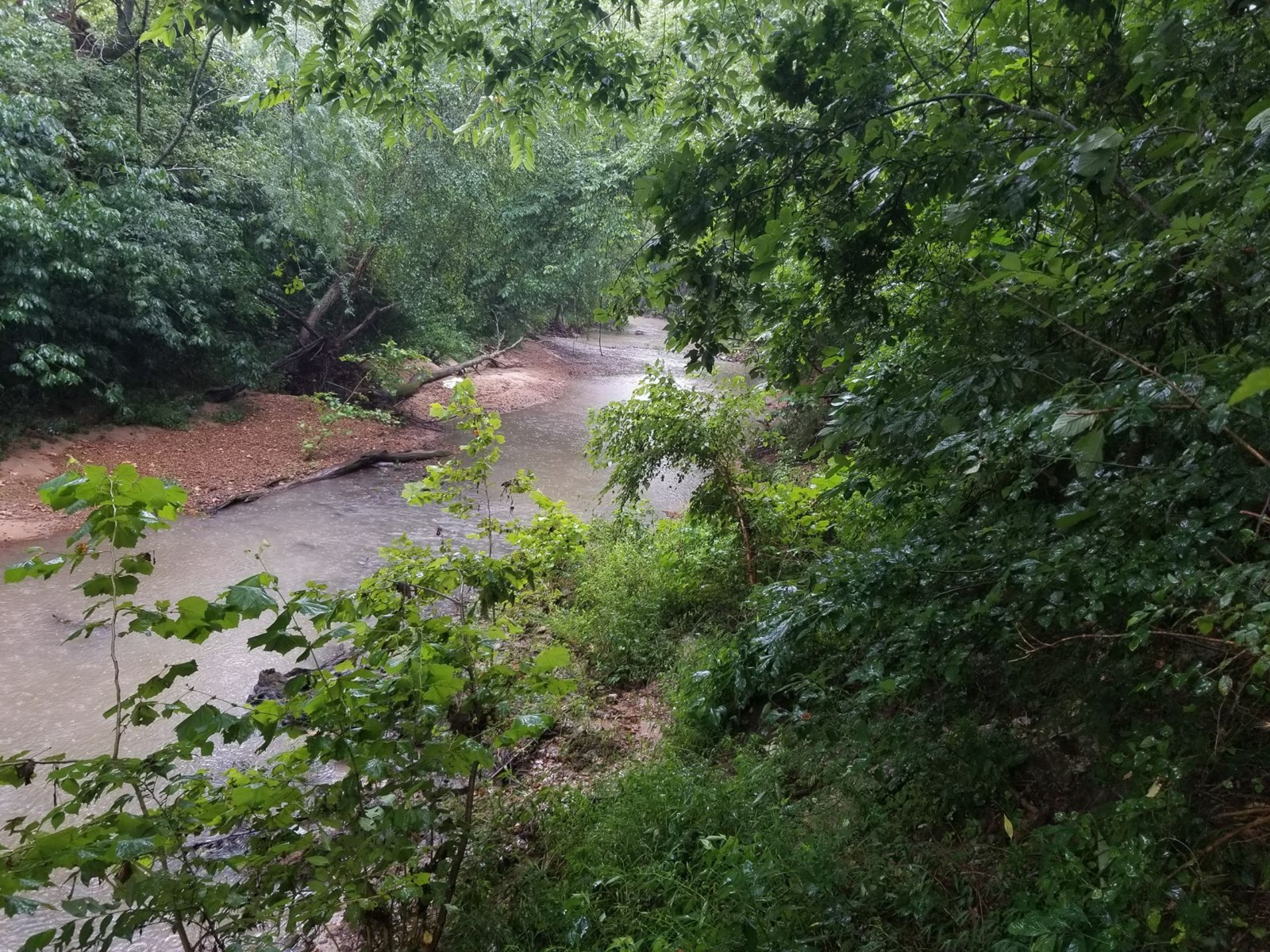 10 ACRES FOR SALE ON FRESHWATER CREEK IN ZION, AR