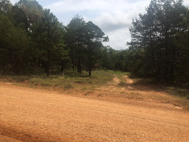 GREAT LOCATION WITH SECLUDED BUILDINGS SITES