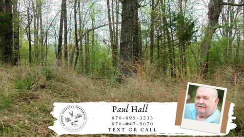 Spring River Lot in Hardy, AR