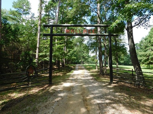 COUNTRY HOME AND ACREAGE IN ARP TEXAS | BUSINESS POTENTIAL