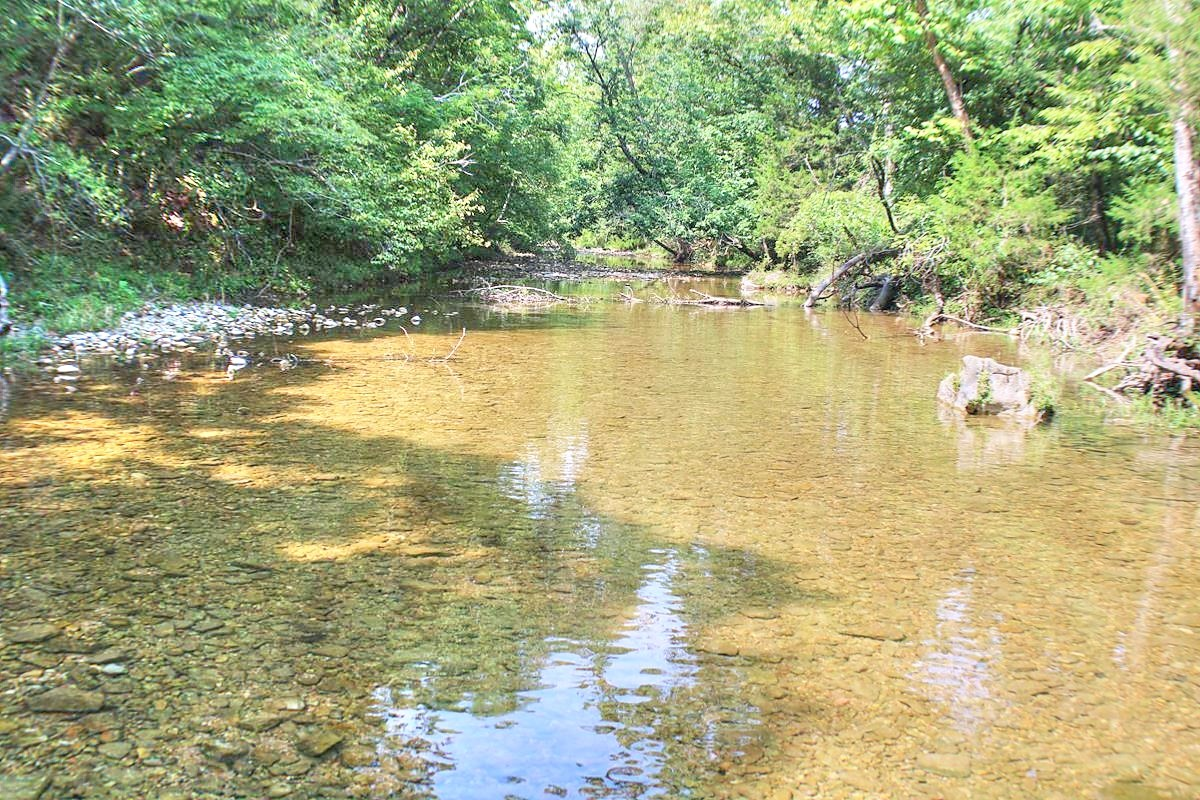 Major Live Water on 180 Acres Near Caney Mountain Refuge