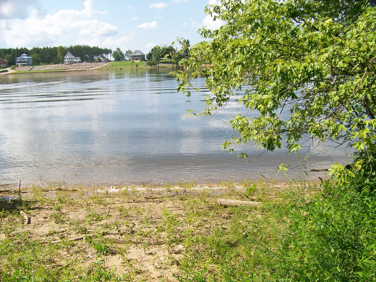 RIVERFRONT LOT FOR SALE ON TN RIVER