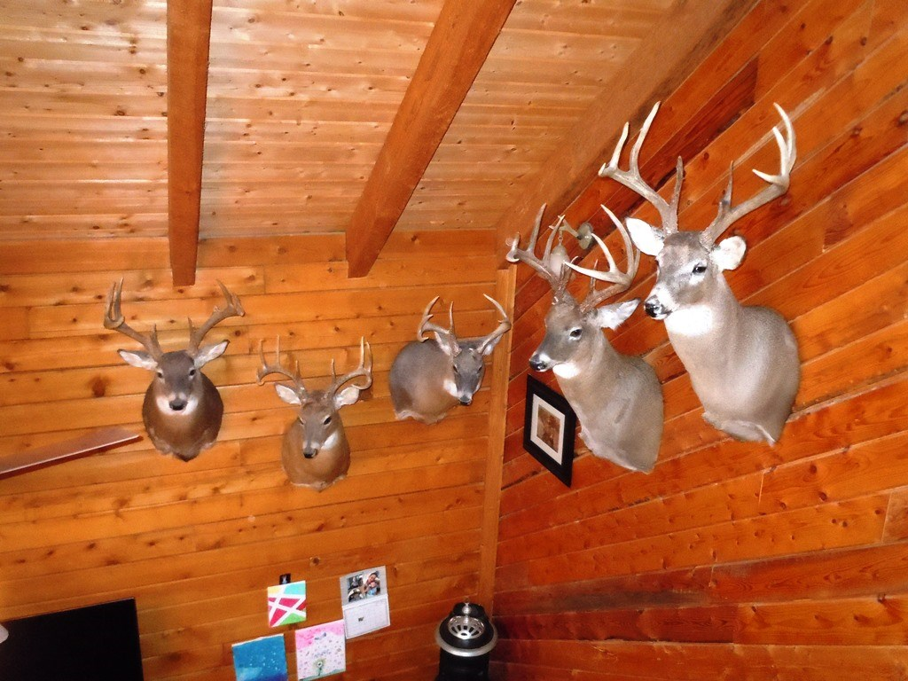 WHITE TAIL DEER HUNTING PROPERTY FOR SALE HARRISON COUNTY IA