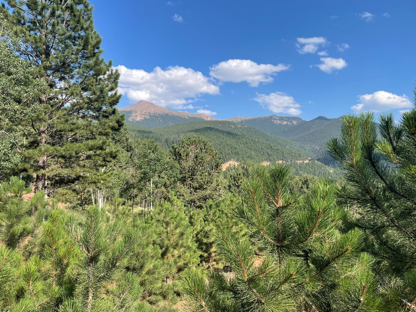 Mountain Property for sale