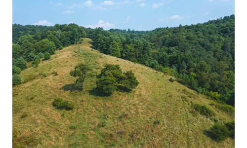 Recreational Property for Sale in Carroll County VA!