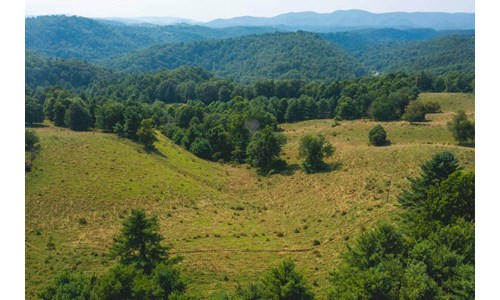 Land for Sale with Country Views in Carroll County VA!