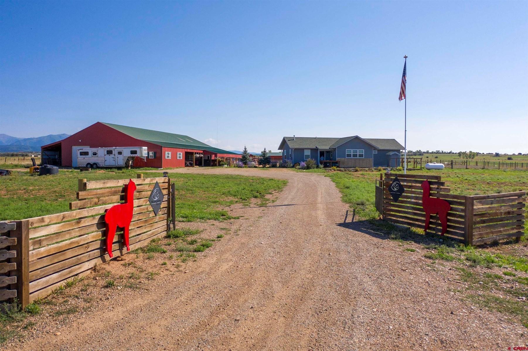 Alpaca Ranch For Sale in Southwest Colorado!