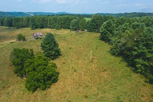 BUILDING LAND FOR SALE IN DUGSPUR VA!