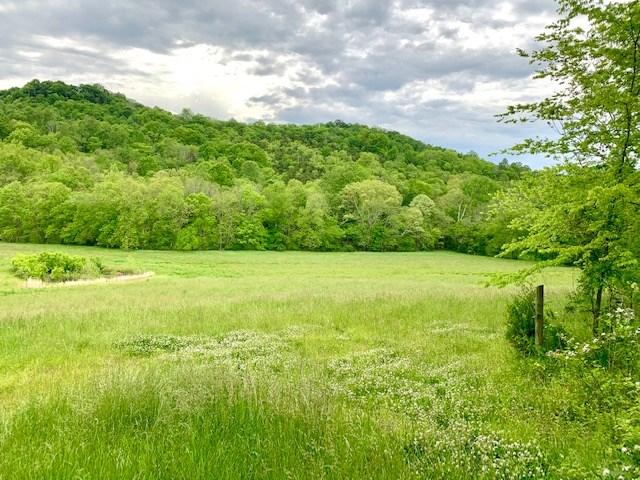 3850 Ensor Hollow Rd, Buffalo Valley TN Land for sale