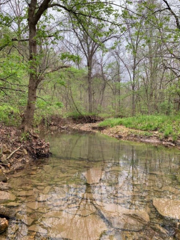 20 Acres in Southern Boone School District