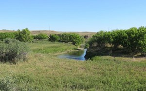 CENTRAL MONTANA CROP & PASTURE LAND WITH LIVE CREEK FOR SALE