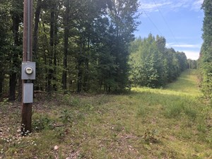 HUNTING AND CABIN SITE IN SEARCY COUNTY ARKANSAS