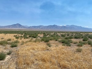 RESIDENTIAL LAND FOR SALE IMLAY NV