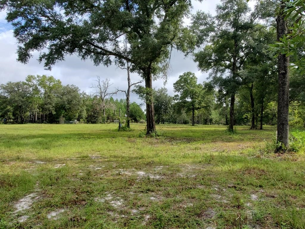 14 ACRES OF PASTURE LAND FOR SALE!