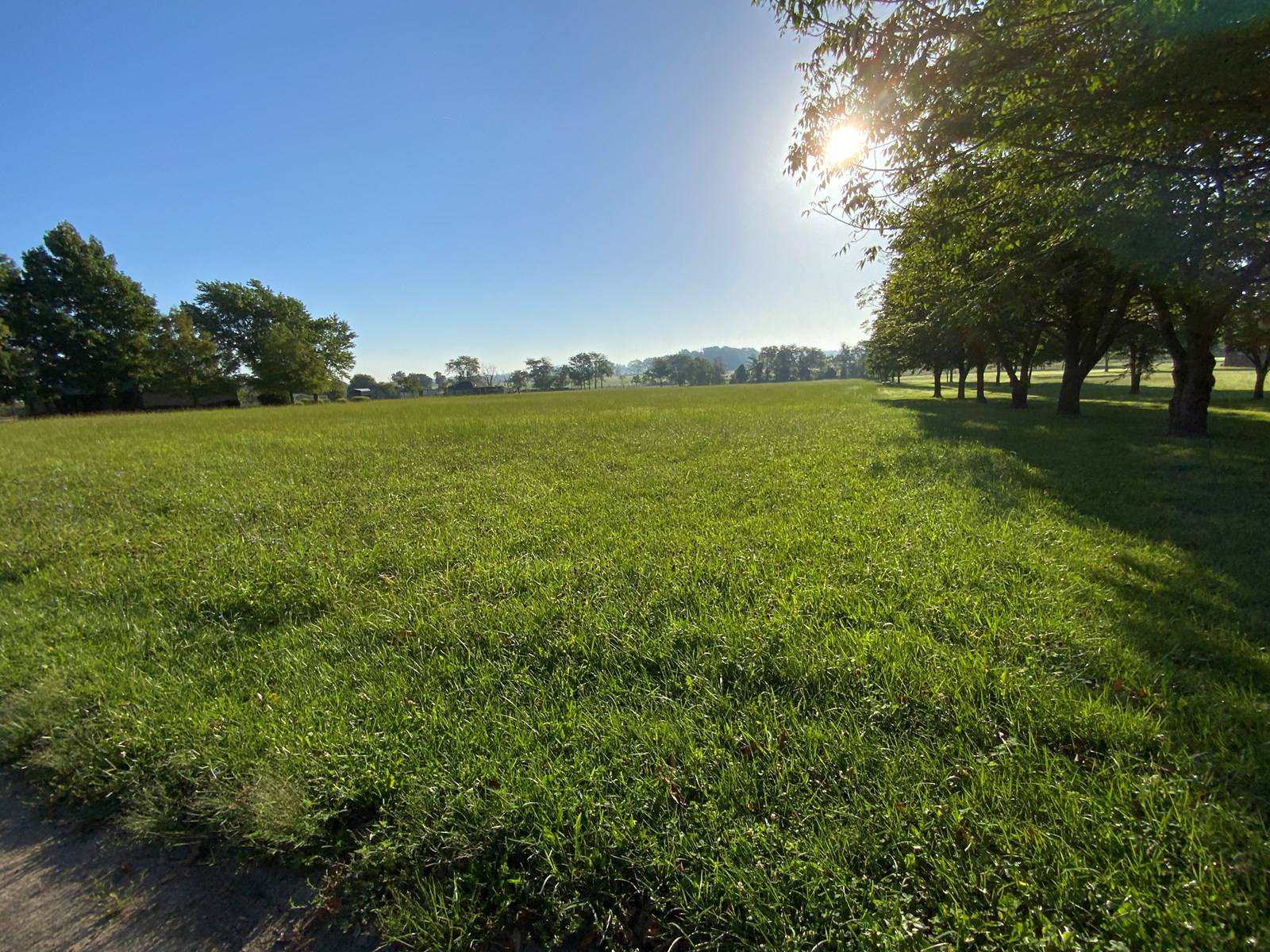 Land for Sale in South Central Missouri - Building Site