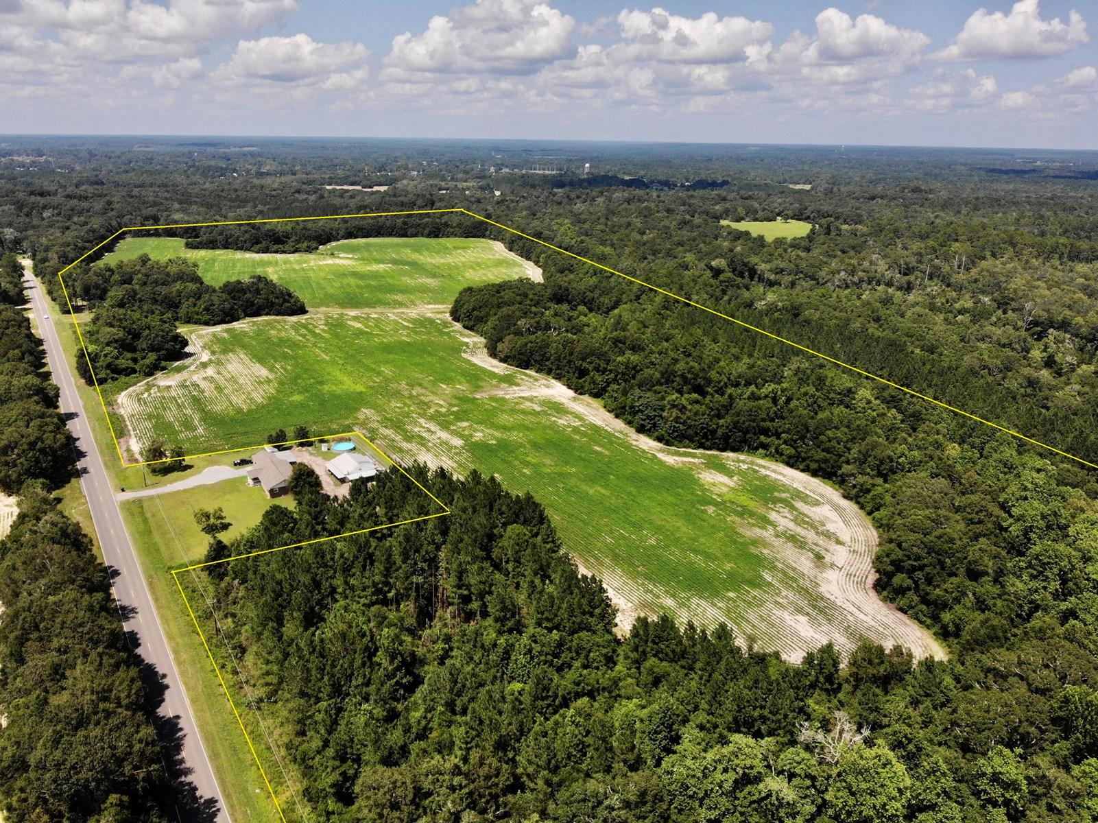 78 acres of Farm Land for Sale Geneva AL - Geneva County