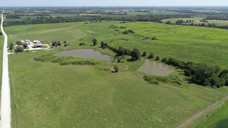 226+/- Acres, Row Crop, Pasture, House, Grain Bins, Sheds