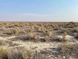 LAND FOR SALE NEAR VALMY, NEVADA