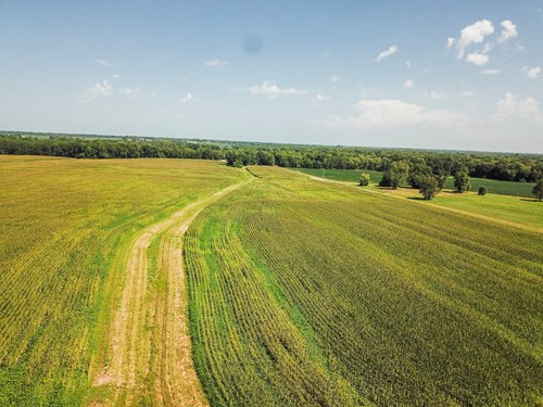 Tract 2 - 241 ac +/- for auction in Audrain County, Missouri