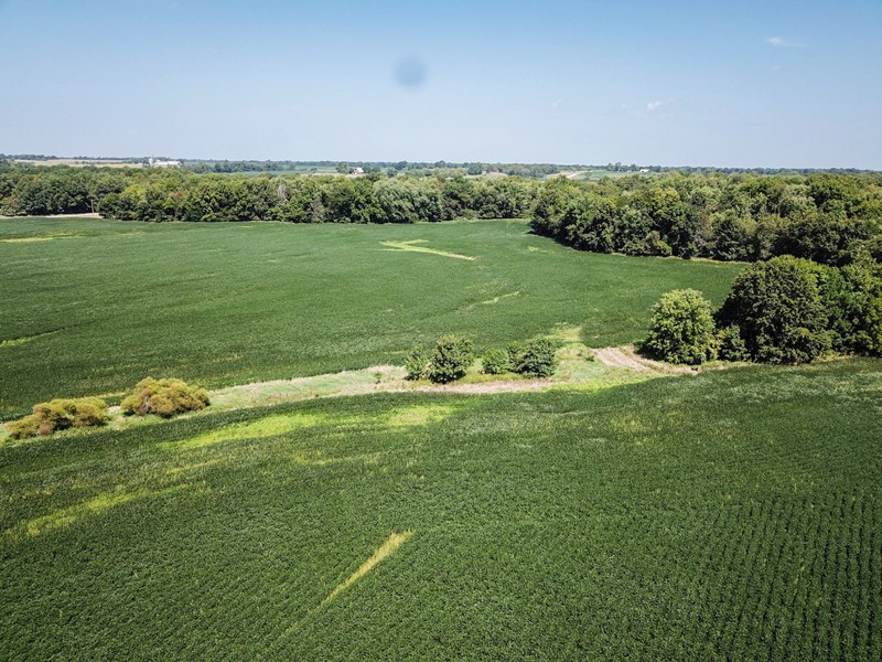 Audrain Tract 3 - 153.4 ac