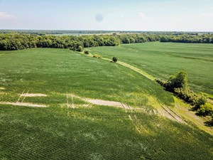 TRACT 3 - 147 AC +/- FOR AUCTION IN AUDRAIN COUNTY, MISSOURI