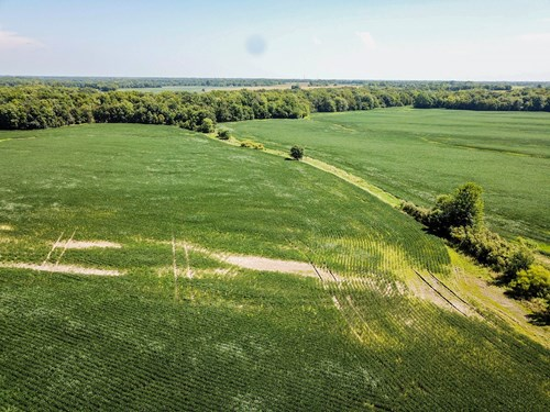 Tract 3 - 153 ac +/- for auction in Audrain County, Missouri