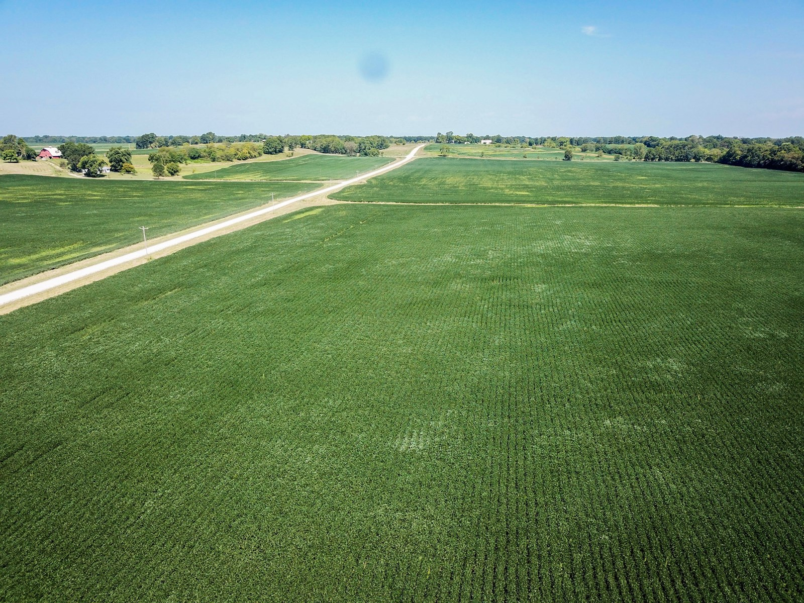 Tract 4 - 843 ac +/- for auction in Audrain County, Missouri